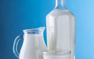 lactose intolerant